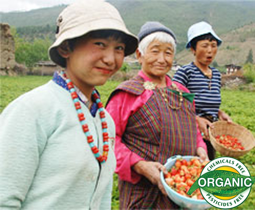 An Entire Country Goes Organic